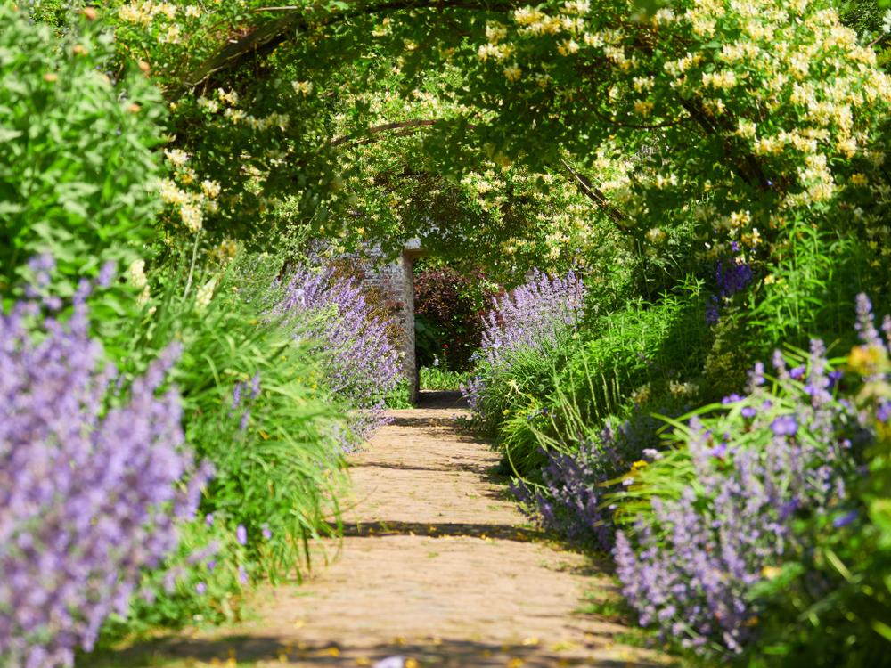 Whatton House go outdoors loughborough